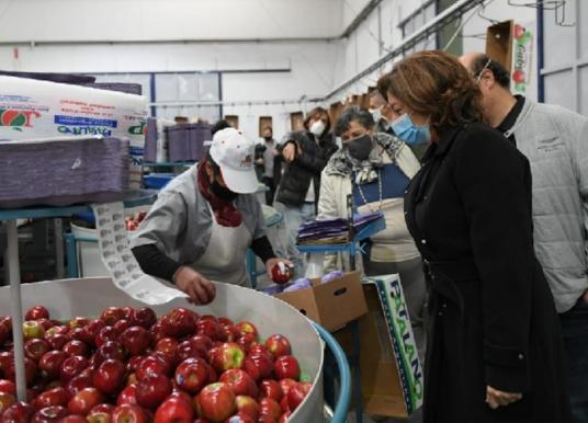 Arabela Carreras visitó una empresa frutícola de Allen